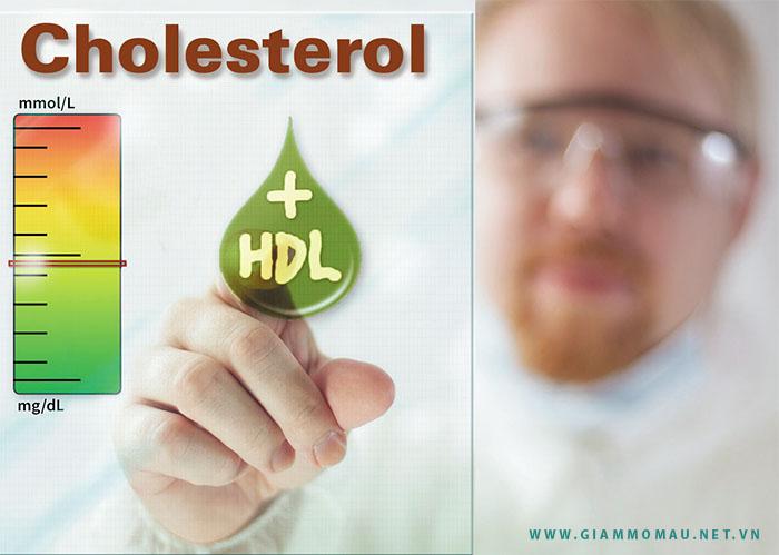 HDL Cholesterol là gì ? – Làm thế nào để tăng HDL Cholesterol ?